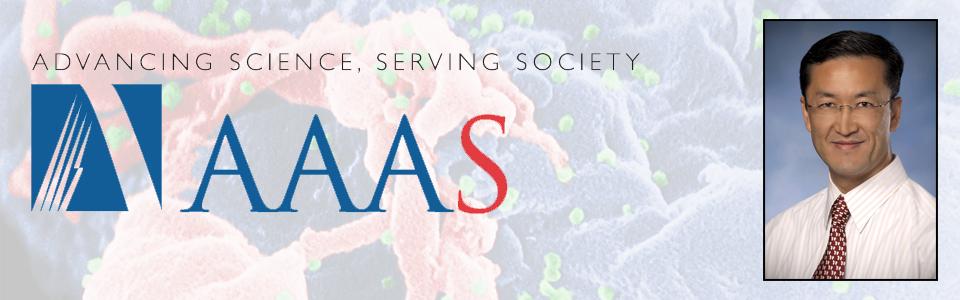 2017 AAAS Fellow