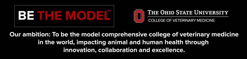 Be The Model graphic with College of Veterinary Medicine logo and college ambition to be the model comprehensive college of veterinary medicine in the world, impacting animal and human health through innovation, collaboration and excellence.