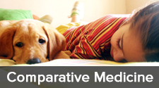 "photo of brunette girl with puppy and words ""comparative medicine,"" click this image to see faculty in this area"