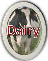 Dairy Resources