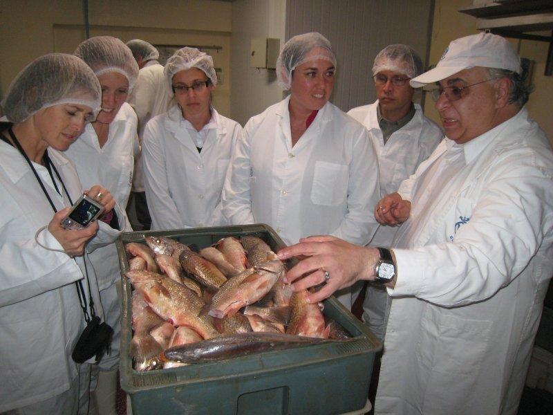 Participants learn about fish quality and processing at a plant in Uruguay in 2010.