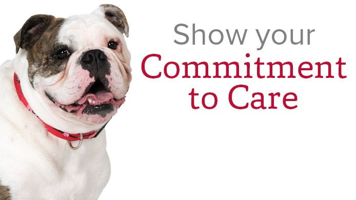 Show your commitment to care. Help us raise $2 million by December 31st during the Commitment to Care Challenge campaign!