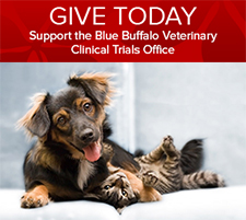 Give today to the clinical trials office button